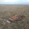 В крымском селе нашли еще 6 авиабомб времен войны