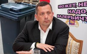 Аксенов обещал привязать мэра Ялты к мусорному баку