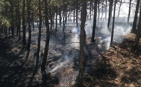 Халатность туристов привела к лесному пожару в районе Судака
