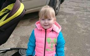 Тело пропавшей в Крыму девочки нашли в канаве