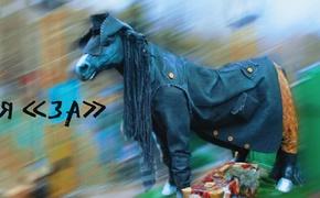 «Конь в пальто», проголосовавший в Ялте, рассказал о перформансе