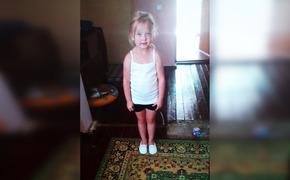 На поиски пятилетней девочки в Крым едут со всей России