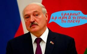 Беларусь заинтересовалась крымскими устрицами
