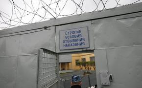 В Севастополе педофил получил 10 лет «строгача»