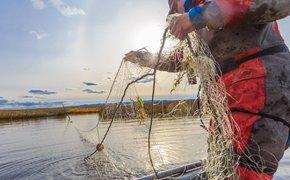 Крымские пограничники задержали рыбаков с тонной камбалы