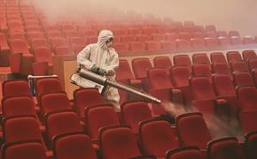 Правила работы кинотеатров скорее профанация