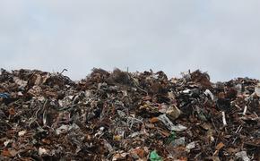 Между свалкой и жилым сектором в Каменке уберут мусор