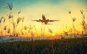 Пьяный мужчина из Симферополя устроил дебош в самолете