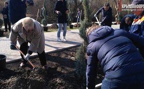 Крымские чиновники закопали  в парке «розовых фламинго»