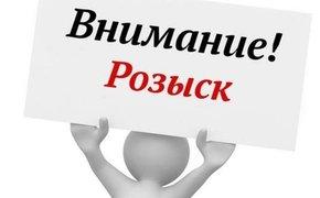 Крымский следком занялся поисками 5-летней девочки