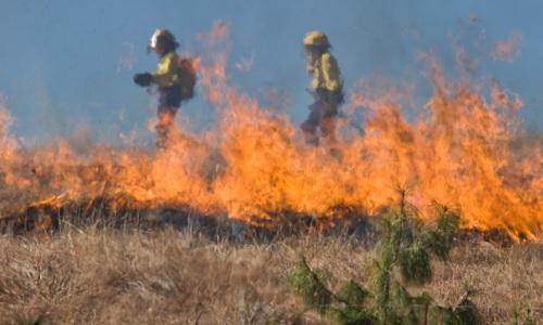 На Крымском полуострове все еще пожароопасно