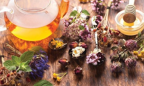 Крым признали одним из самых «чайных» в России