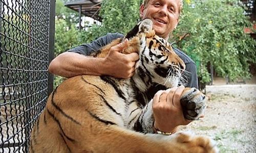 За буквы «Парк львов Тайган» от Зубкова хотят больше миллиона рублей