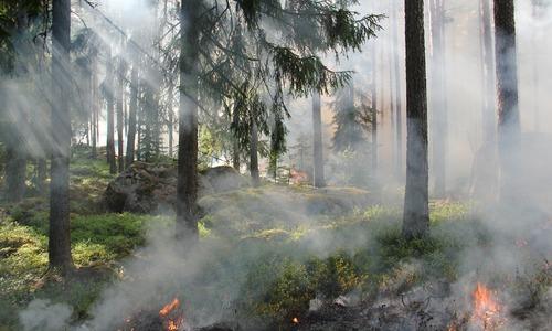 В Феодосии второй раз загорелся горный склон