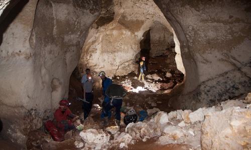 В пещере возле «Тавриды» нашли 15 мешков костей