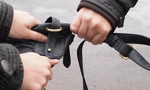 В Севастополе избили и ограбили школьницу
