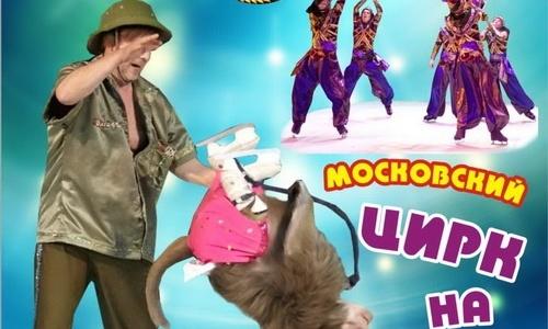 В Крыму разгорелся скандал из-за отмены гастролей цирка Юрия Никулина