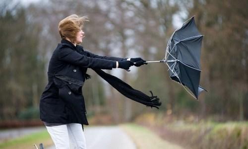 Севастопольцев пугают ураганным ветром