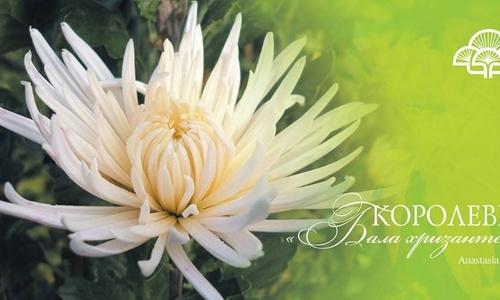Никитский ботанический сад поднимется  на два бала