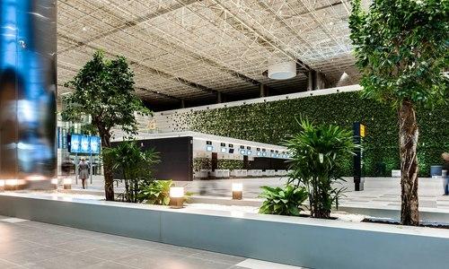 Аэропорт Симферополь назван одним из комфортнейших в РФ