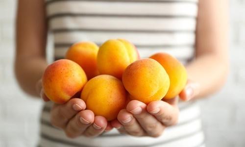 Крымские фрукты никуда не экспортируют