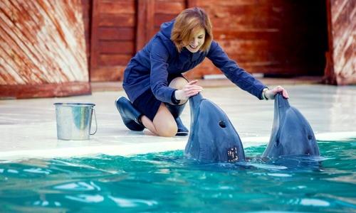 Чей дельфинарий, единственный из всех в Крыму, получил лицензию?