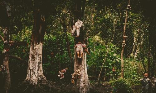Зачем Сергей Аксенов начал рассказывать сказки про страшные крымские леса?