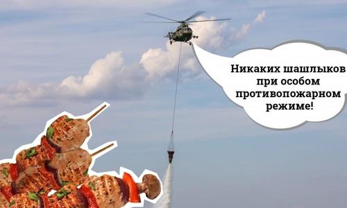 До конца недели крымчанам запретили жарить шашлыки