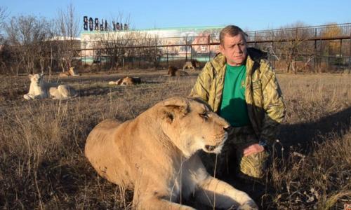 Зубков просит забрать животных «Тайгана». Иначе их ждет отстрел