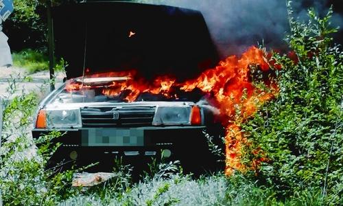 Что такого случилось в лесу, что ребенок обгорел?