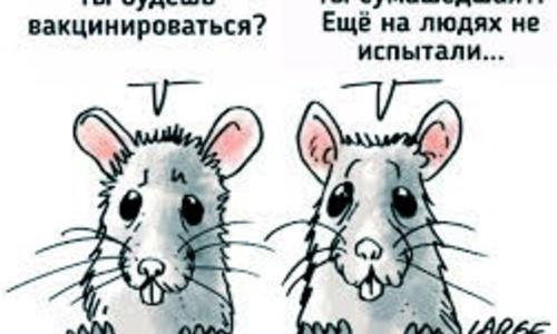 48% россиян не готовы вакцинироваться ради отдыха