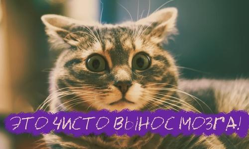 Новый год в Крыму пройдет на вынос