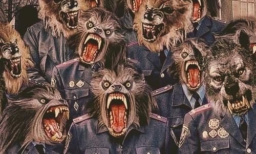 В Крыму взяли полицейскую ОПГ?