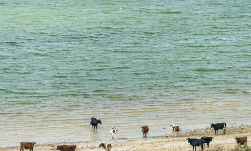 Межгорное водохранилище поможет напоить Крым