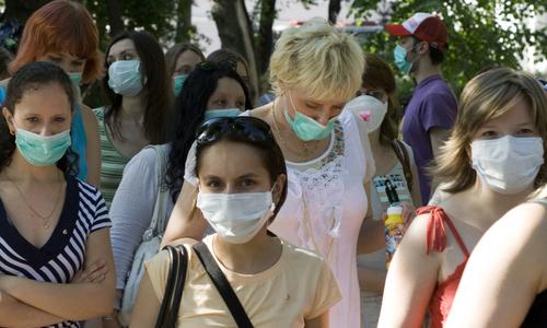 На борьбу с амброзией в Симферополе выделят 5 миллионов