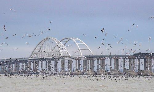 Подходы к Крымскому мосту подорожают из-за Манитры